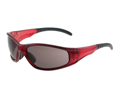 Picture of VisionSafe -242SARDSD - Smoke Hard Coat safety glass